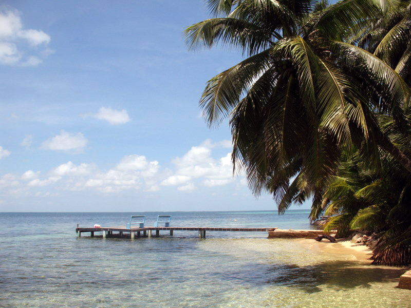 Two chairs on a dock in clear shallow water surrounded by palm trees.