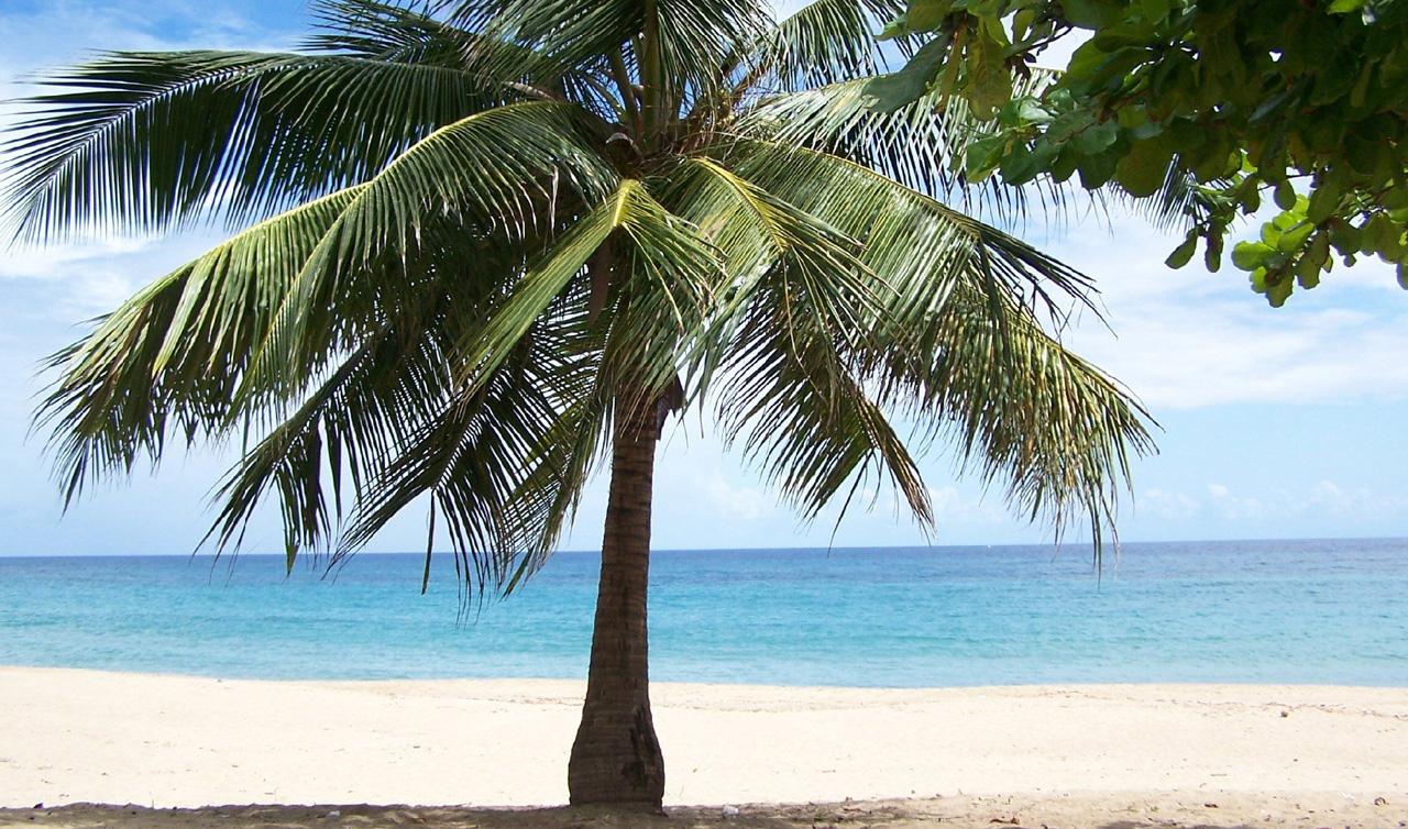 Puerto Rico S Best Beaches For Sun Surf Snorkle Moon Com