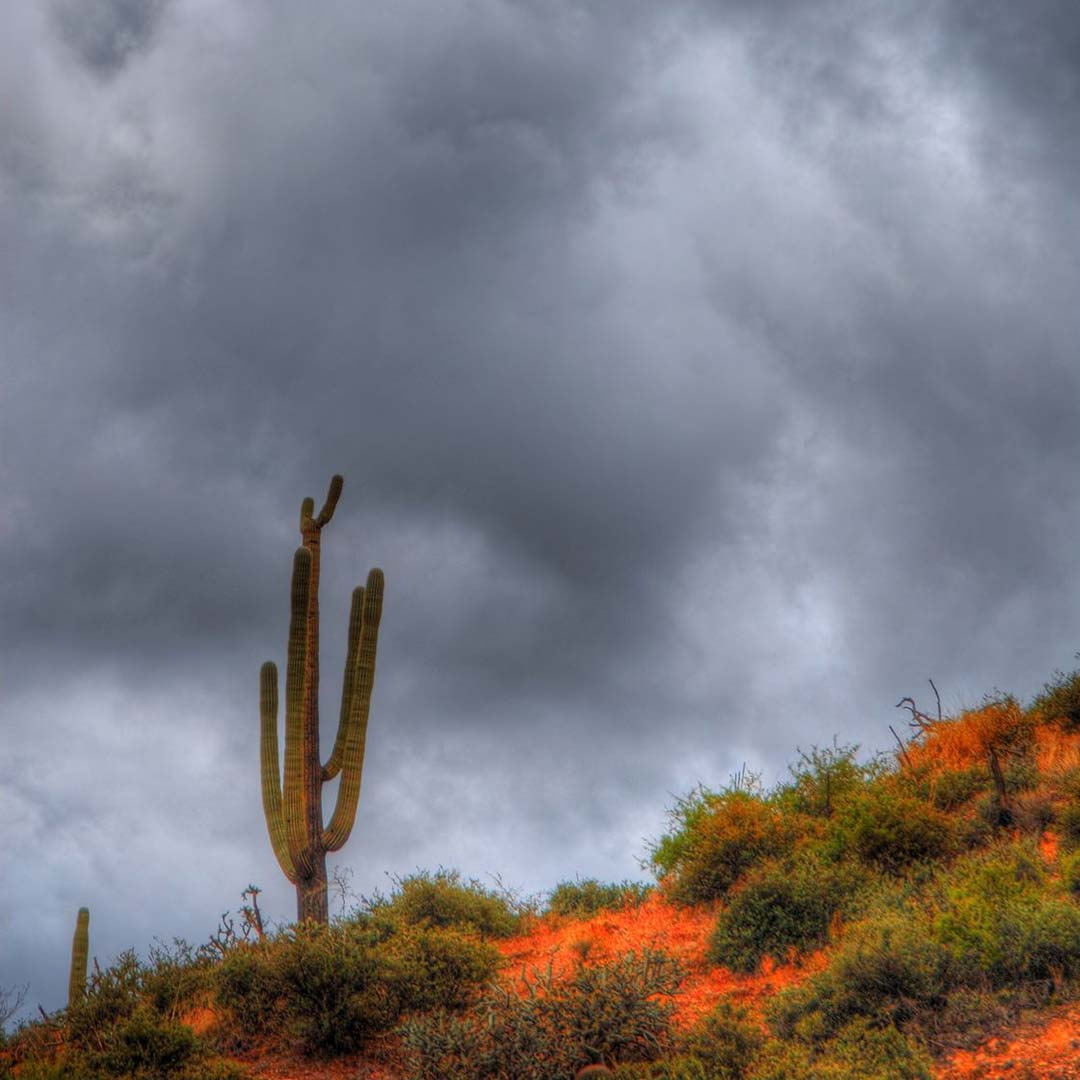 A storm gathers over the desert in New Mexico. Photo © Paul Moore/123rf.